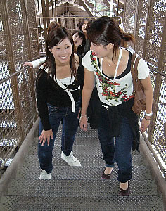 Picture Steps Eiffel Tower on Group Of Japanese Students Take A Sightseeing Trip To Paris